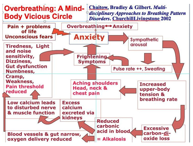 Breath - Potential Effects on Physiology